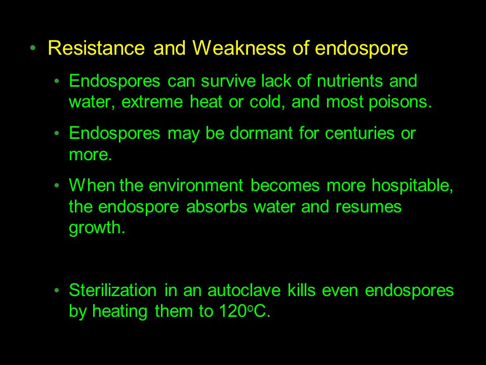 Resistance and Weakness of endospore
