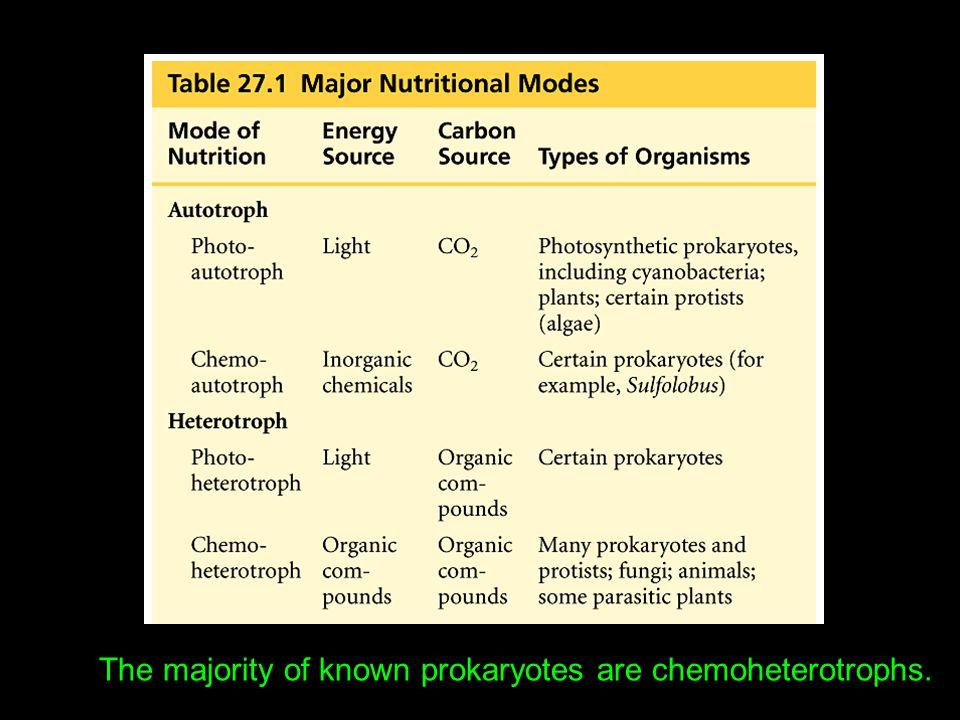 The majority of known prokaryotes are chemoheterotrophs.