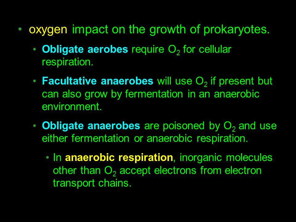oxygen impact on the growth of prokaryotes.