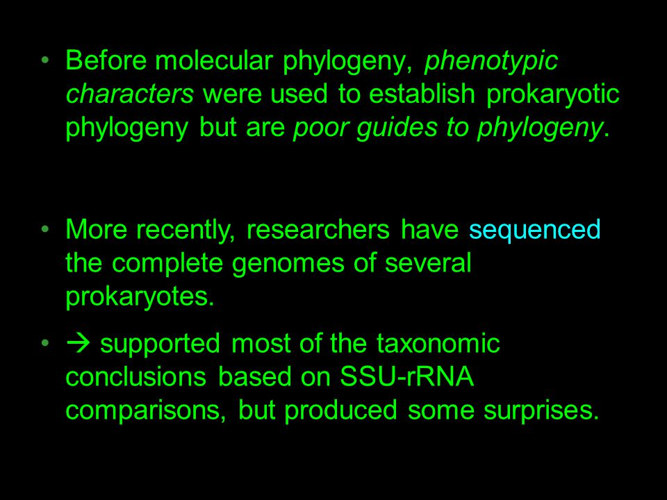 Before molecular phylogeny, phenotypic characters were used to establish prokaryotic phylogeny but are poor guides to phylogeny.