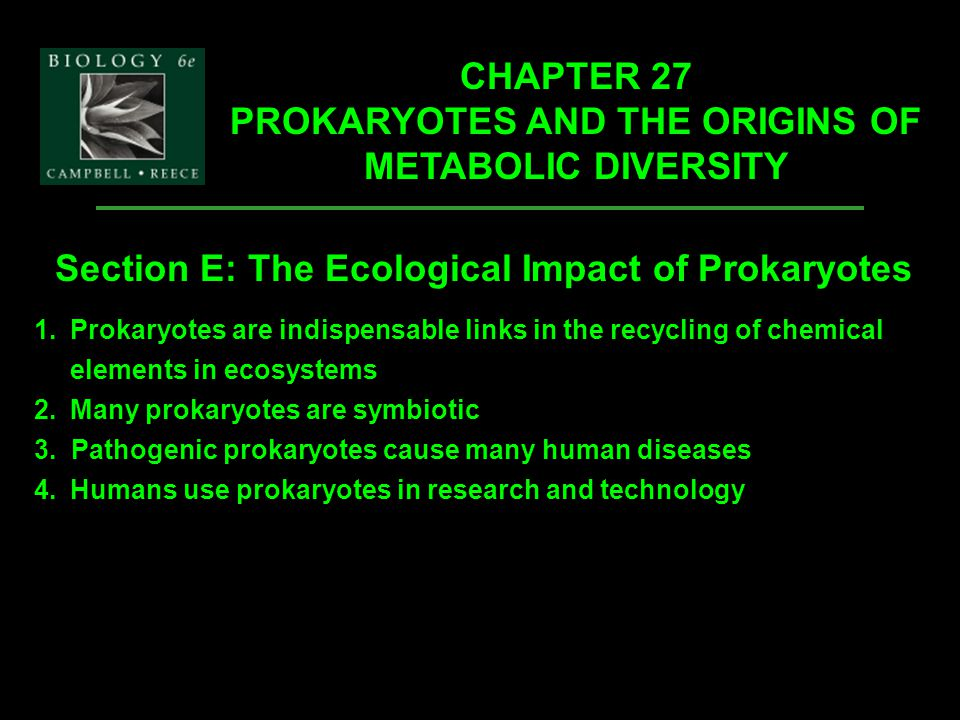 CHAPTER 27 PROKARYOTES AND THE ORIGINS OF METABOLIC DIVERSITY