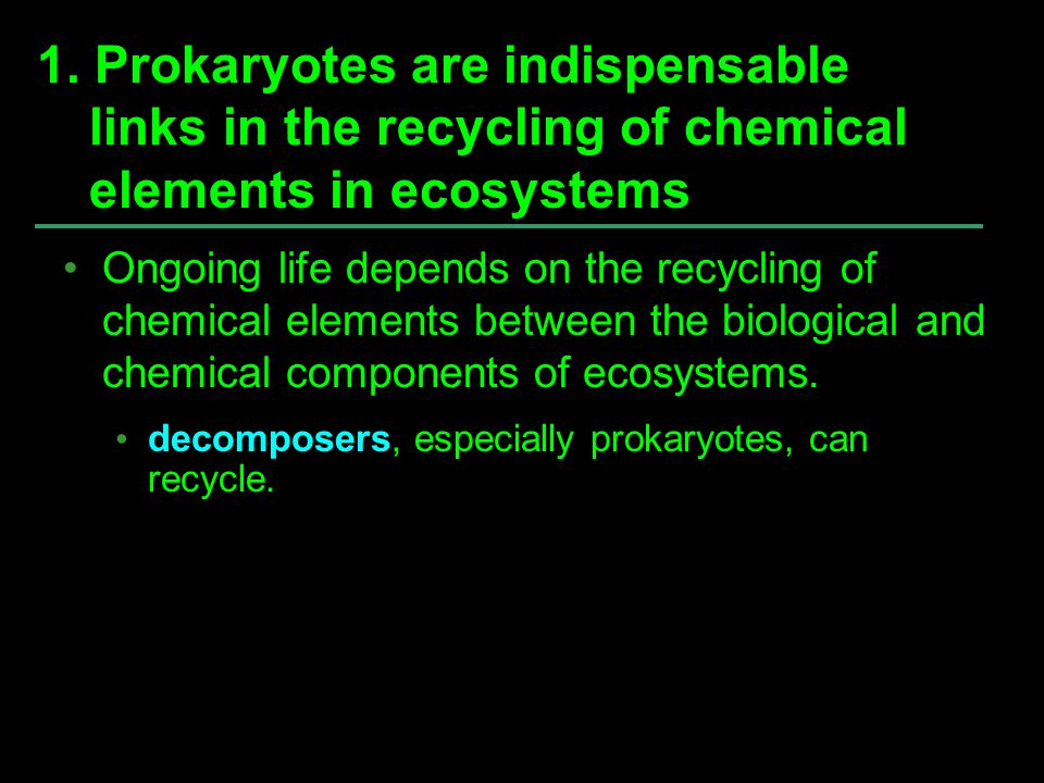 1. Prokaryotes are indispensable links in the recycling of chemical elements in ecosystems