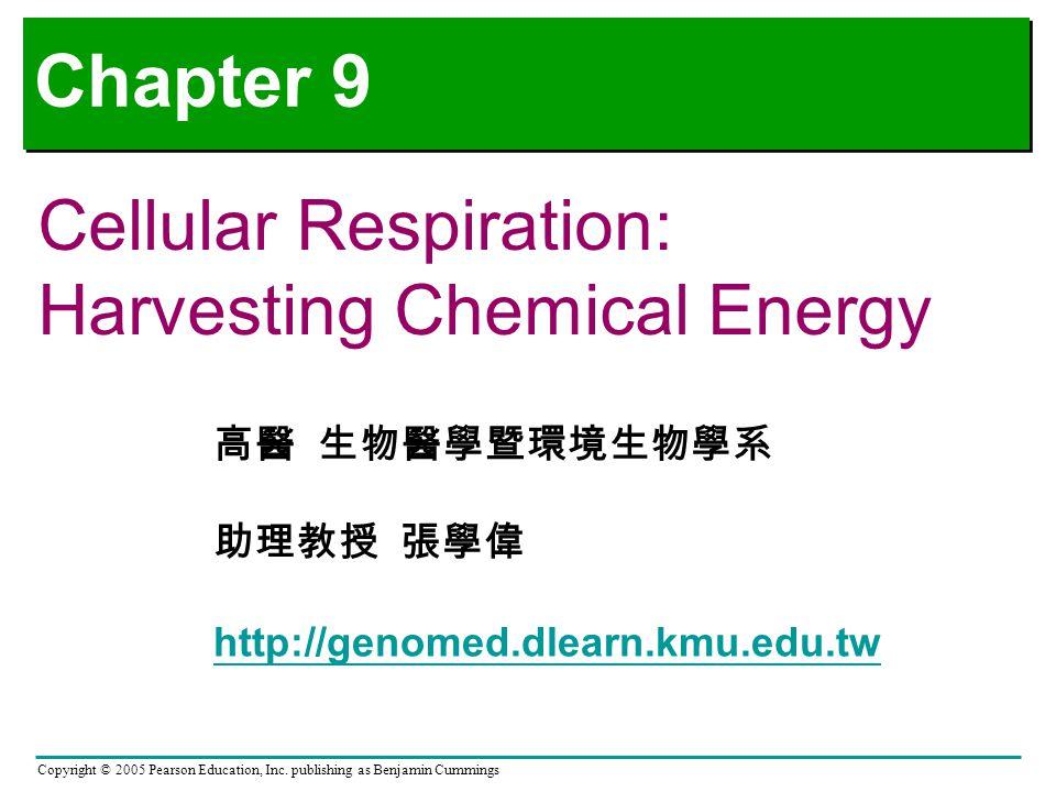 Chapter 9 Cellular Respiration: Harvesting Chemical Energy