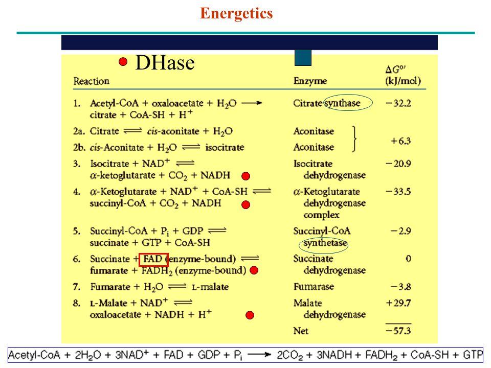 Energetics DHase