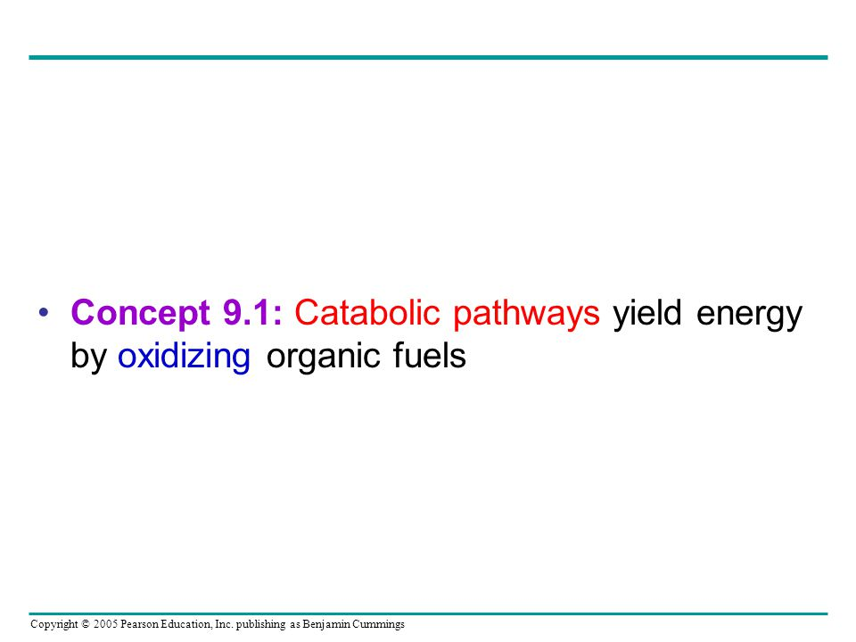 Concept 9.1: Catabolic pathways yield energy by oxidizing organic fuels