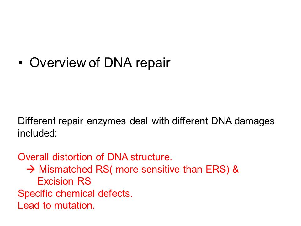 Overview of DNA repair Different repair enzymes deal with different DNA damages included: Overall distortion of DNA structure.