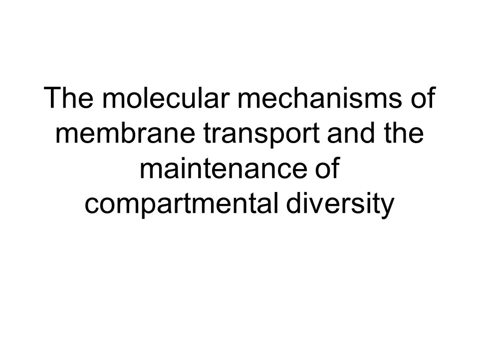 The molecular mechanisms of membrane transport and the maintenance of compartmental diversity