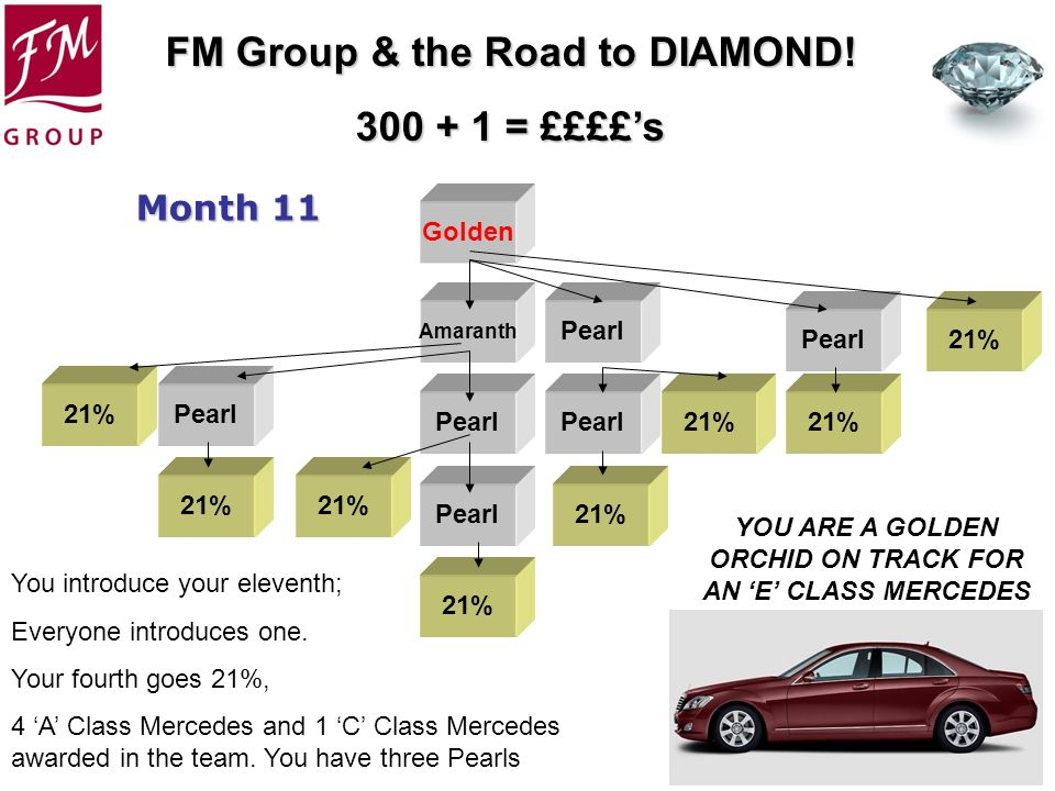 YOU ARE A GOLDEN ORCHID ON TRACK FOR AN 'E' CLASS MERCEDES