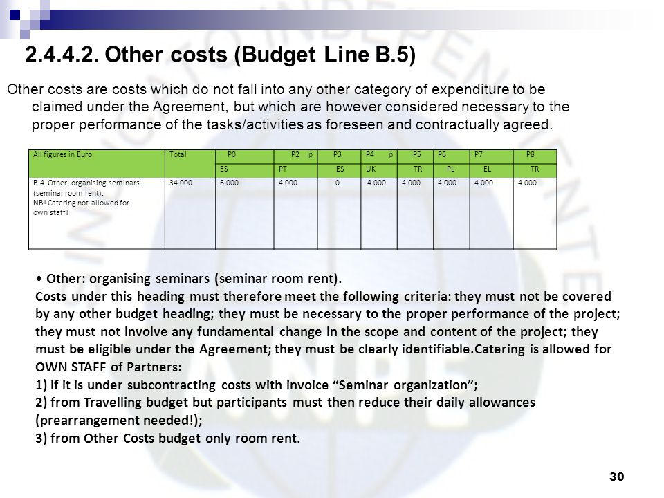 Other costs (Budget Line B.5)