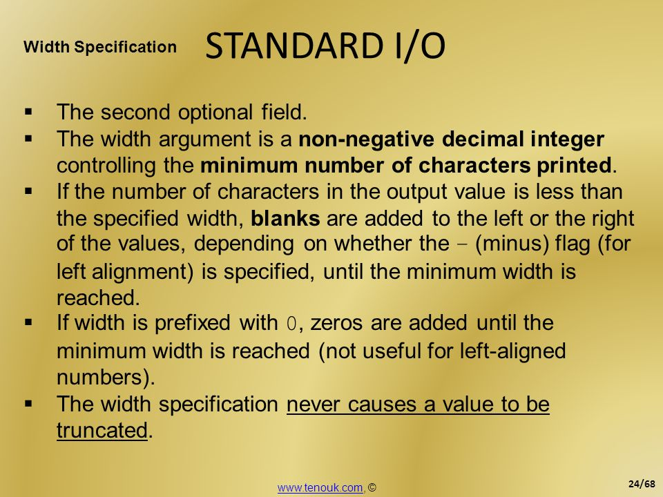 STANDARD I/O The second optional field.