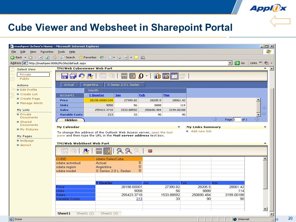 Cube Viewer and Websheet in Sharepoint Portal