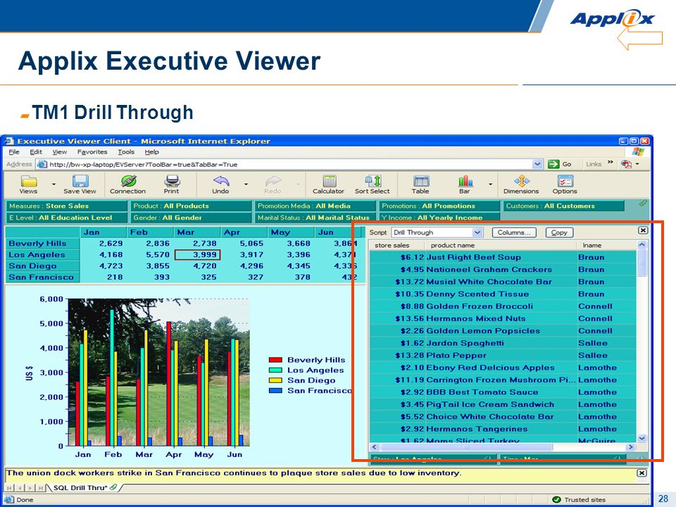 Applix Executive Viewer