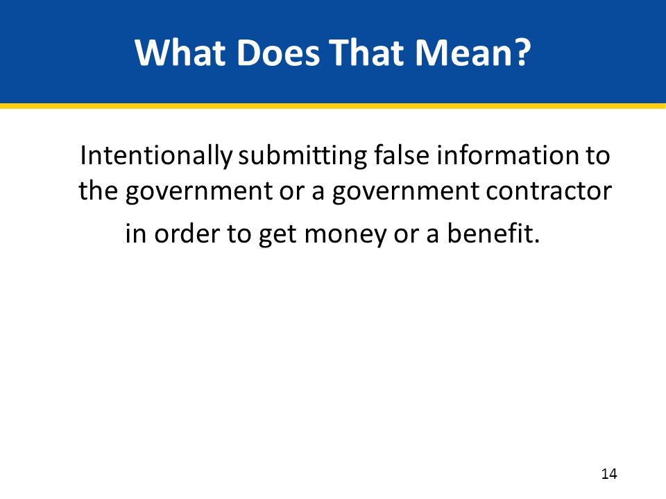 What Does That Mean Intentionally submitting false information to the government or a government contractor in order to get money or a benefit.
