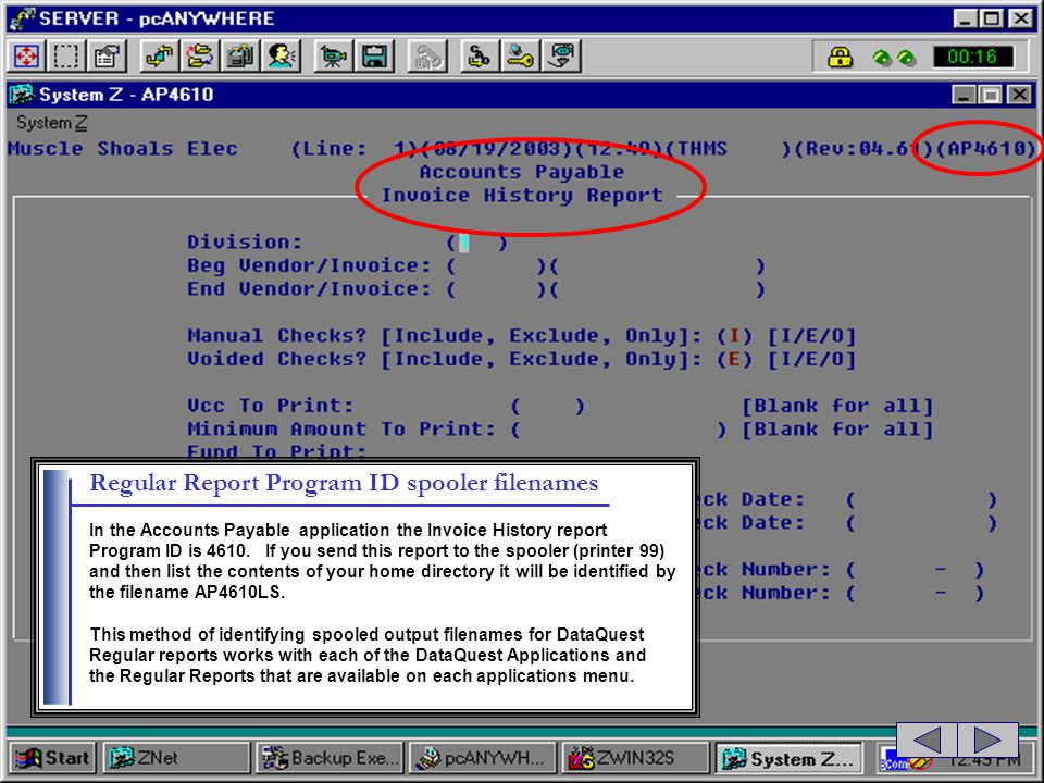 Regular Report Program ID spooler filenames