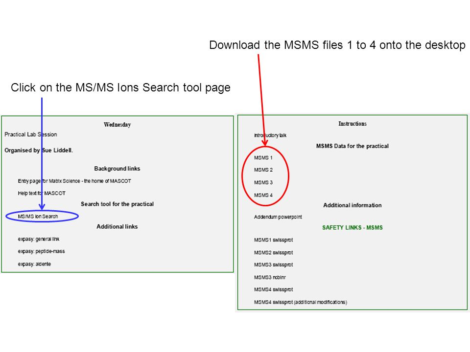 Download the MSMS files 1 to 4 onto the desktop