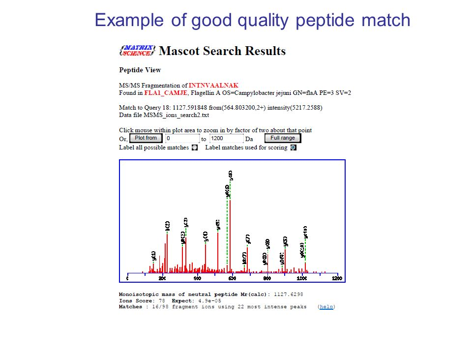 Example of good quality peptide match