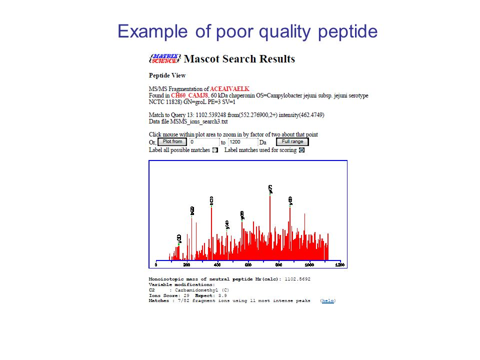 Example of poor quality peptide