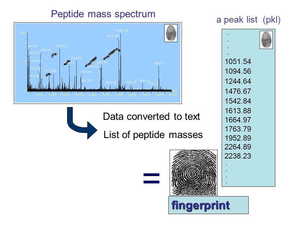 = fingerprint Peptide mass spectrum Data converted to text