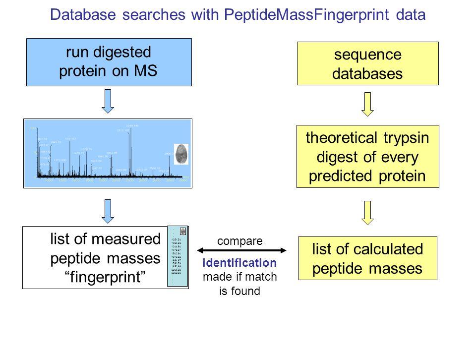 Database searches with PeptideMassFingerprint data