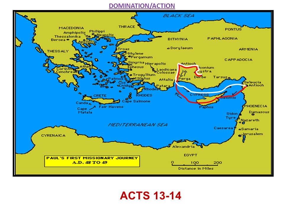 DOMINATION/ACTION ACTS 13-14