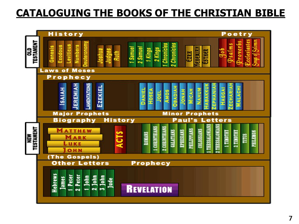 CATALOGUING THE BOOKS OF THE CHRISTIAN BIBLE