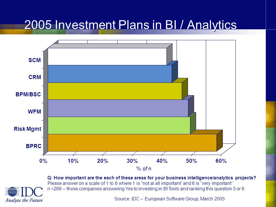 2005 Investment Plans in BI / Analytics