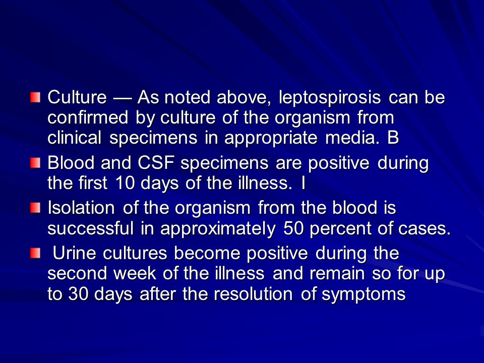 Culture — As noted above, leptospirosis can be confirmed by culture of the organism from clinical specimens in appropriate media. B