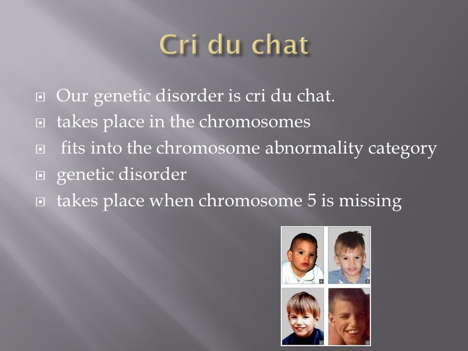 Cri du chat Our genetic disorder is cri du chat.