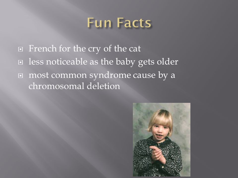 Fun Facts French for the cry of the cat