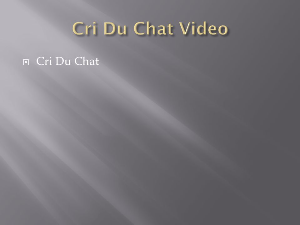 Cri Du Chat Video Cri Du Chat