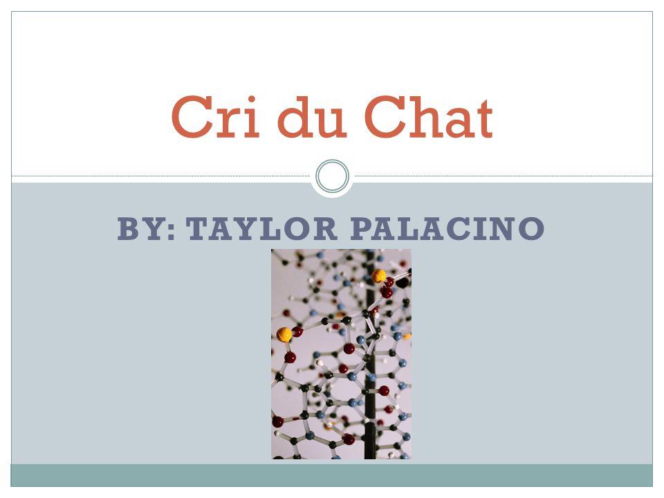 Cri du Chat By: Taylor Palacino