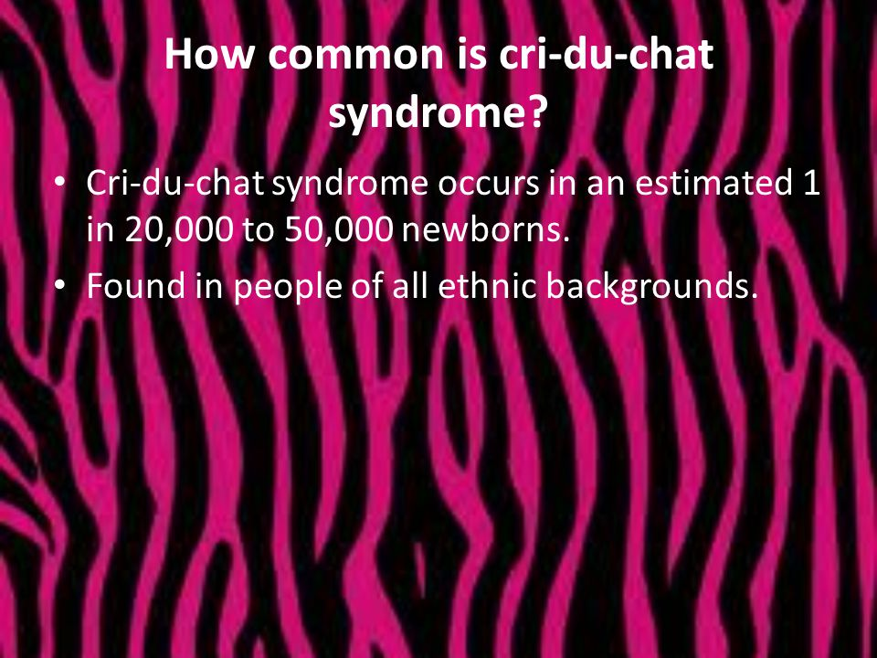How common is cri-du-chat syndrome