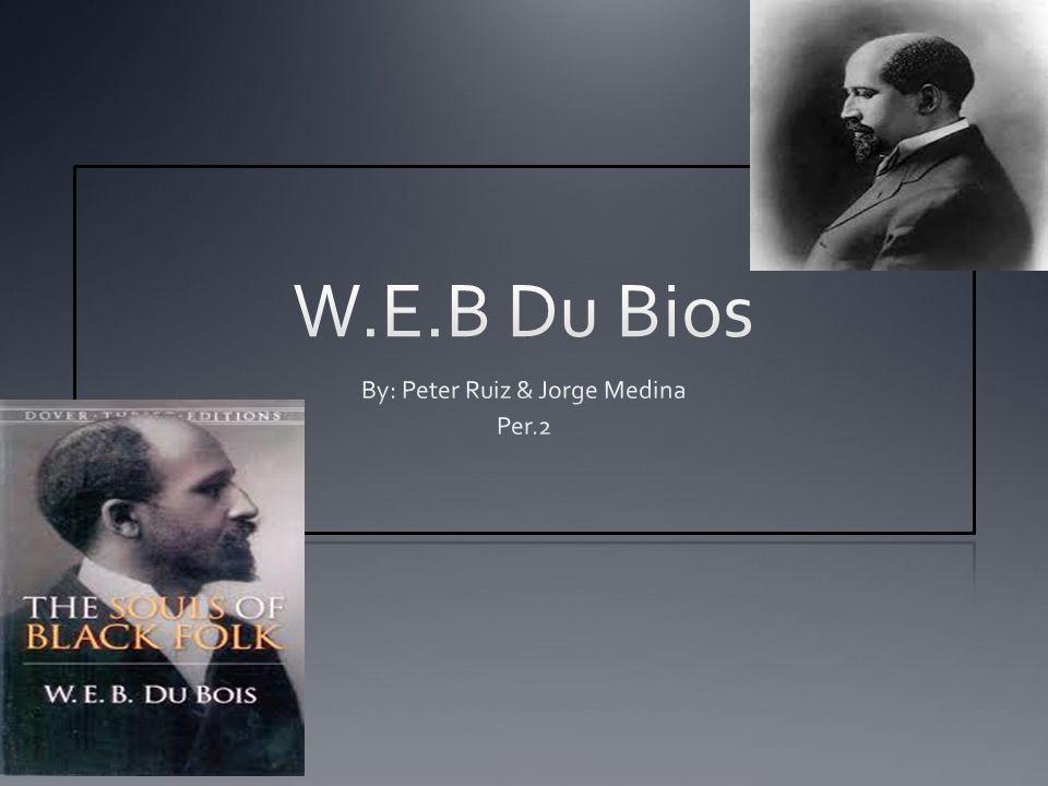 By: Peter Ruiz & Jorge Medina Per.2