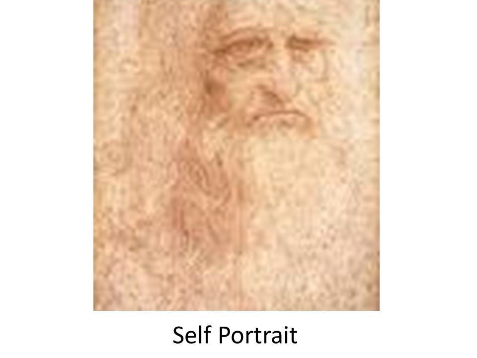 The portrait of a man in red chalk (circa 1510) in the Biblioteca Reale, Turin is widely accepted as a self portrait of Leonardo da Vinci. It is thought that Leonardo da Vinci drew this self-portrait at about the age of 60