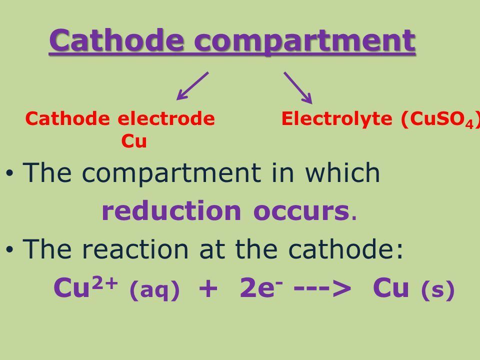 Cathode compartment The compartment in which reduction occurs.