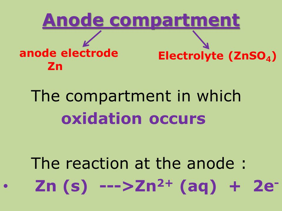 Anode compartment The compartment in which oxidation occurs