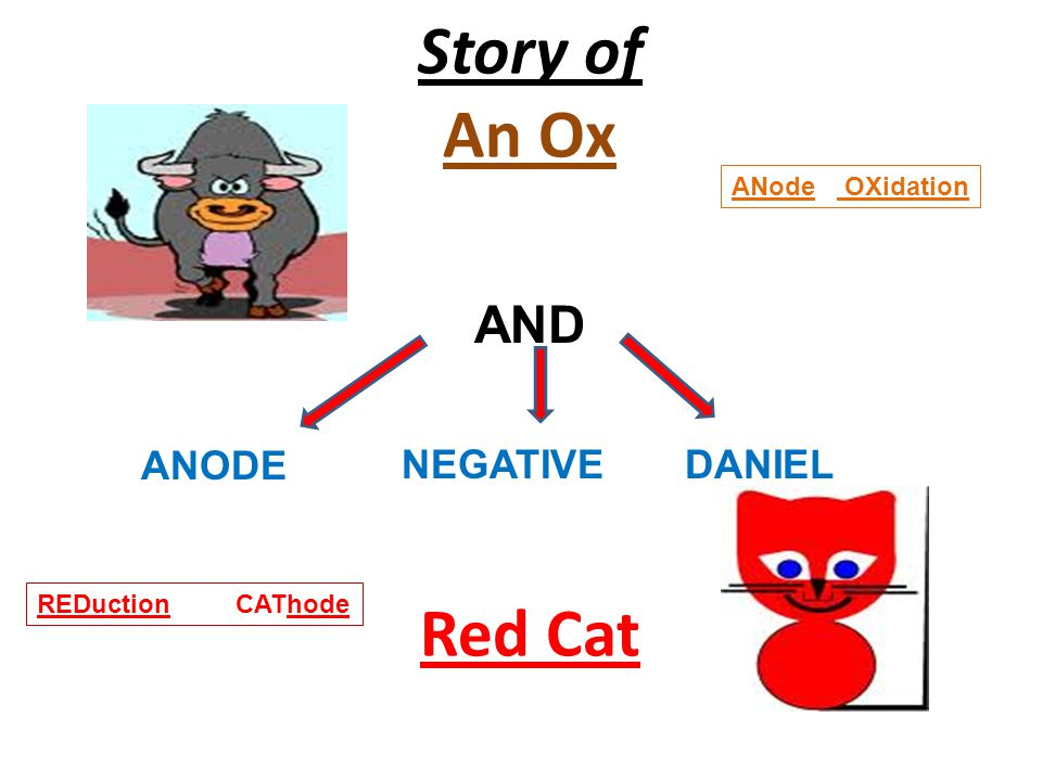 Story of An Ox Red Cat AND ANODE NEGATIVE DANIEL ANode OXidation