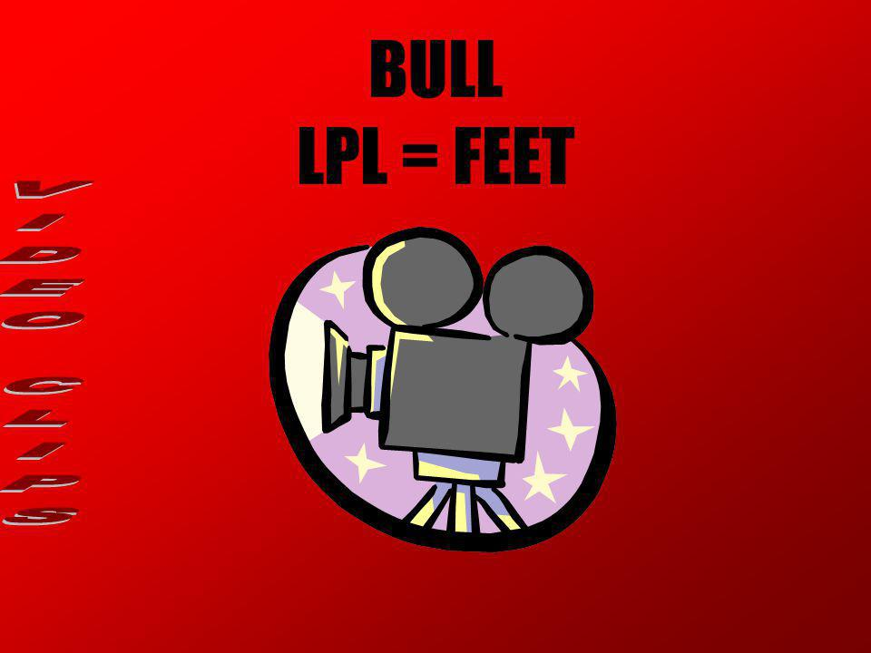 BULL LPL = FEET VIDEO CLIPS