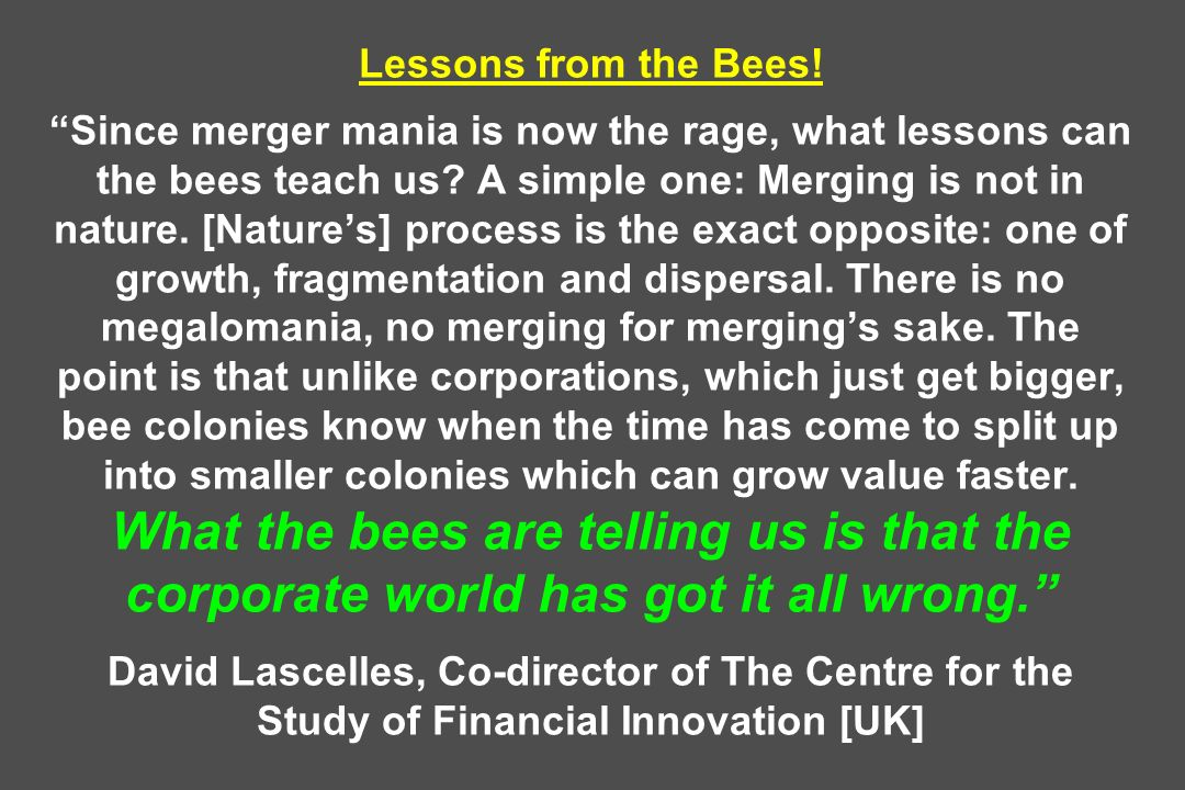 Lessons from the Bees. Since merger mania is now the rage, what lessons can the bees teach us.