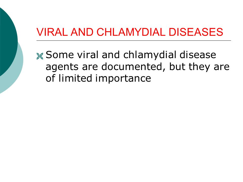 VIRAL AND CHLAMYDIAL DISEASES