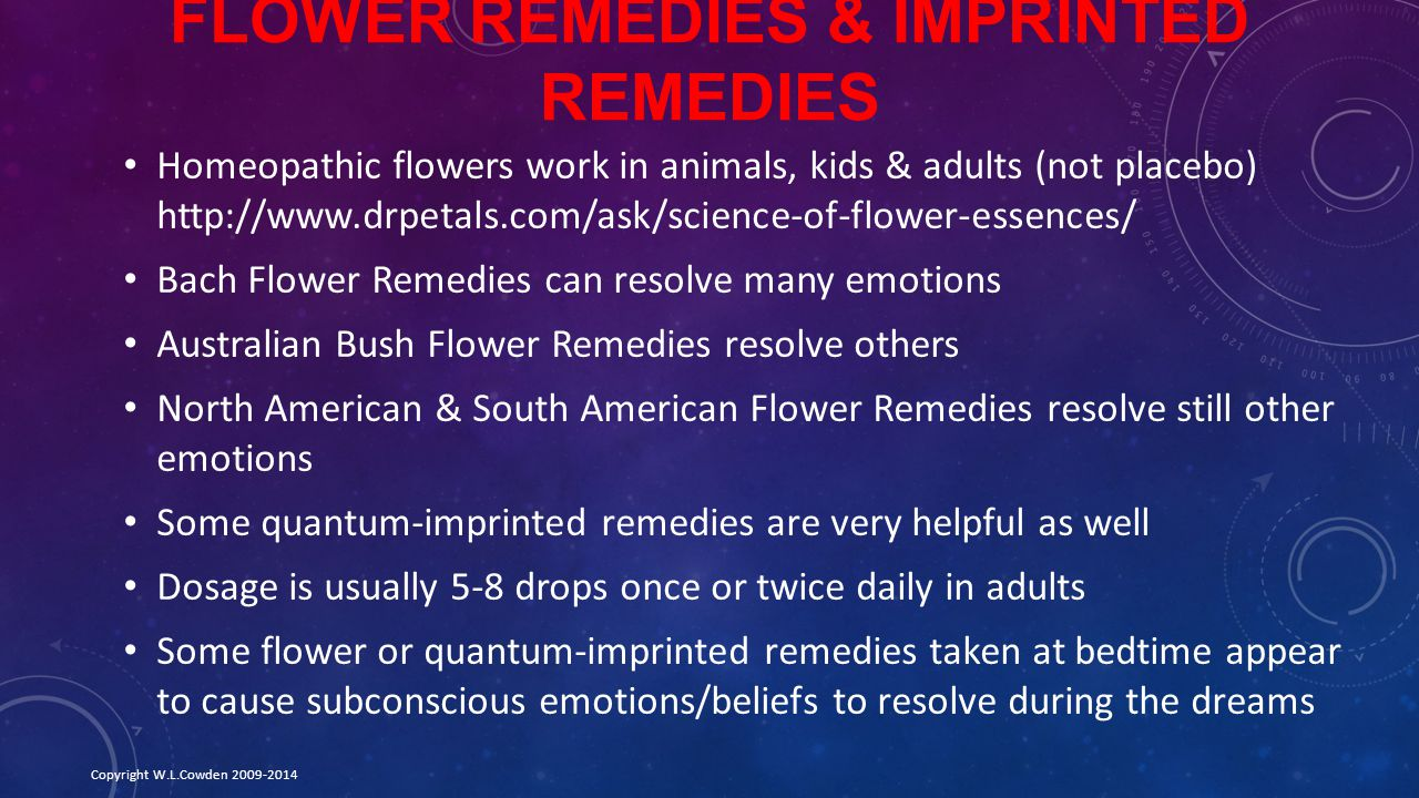 Flower Remedies & Imprinted Remedies
