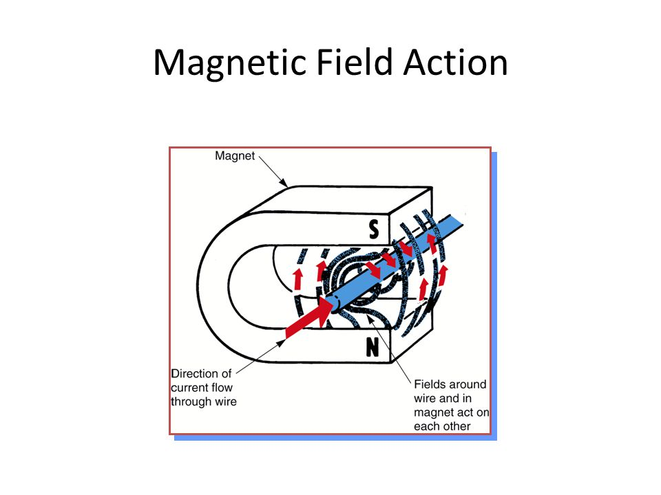 Magnetic Field Action
