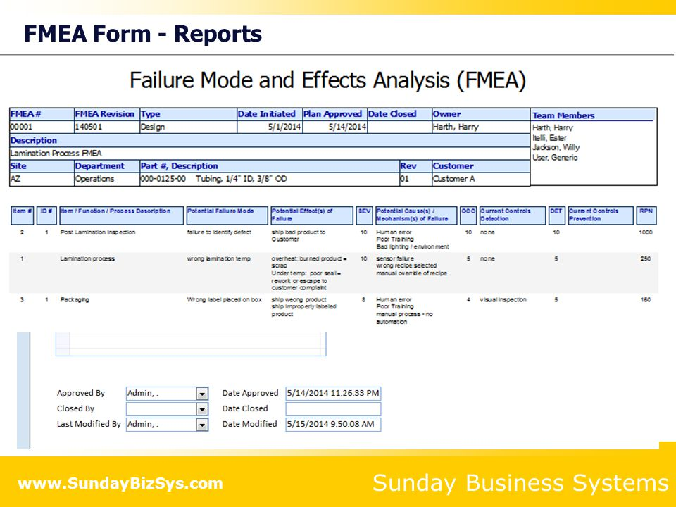 FMEA Form - Reports