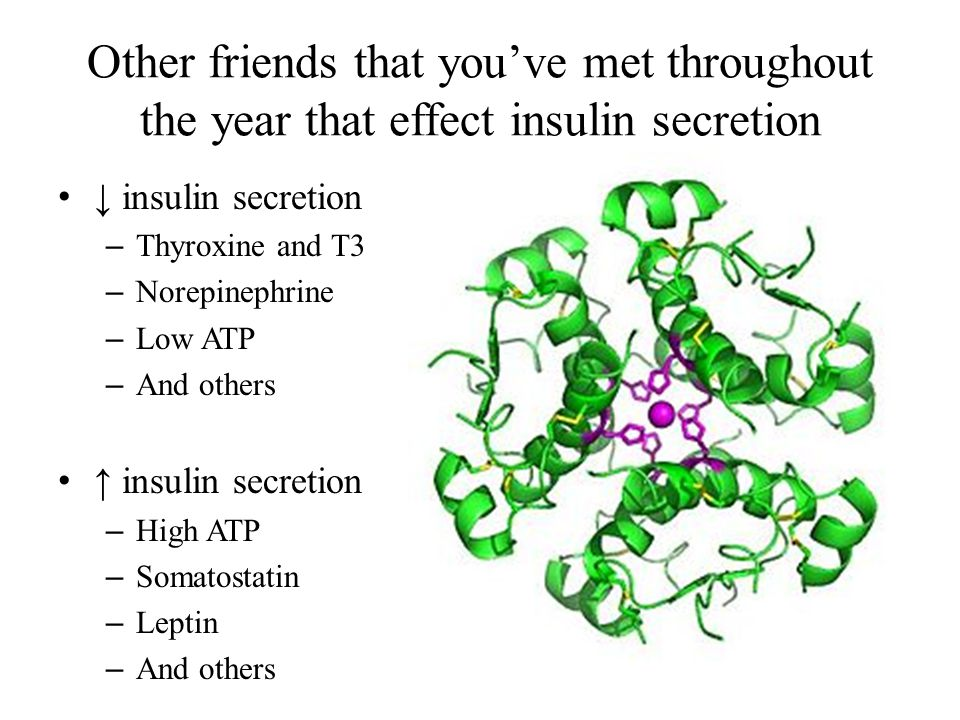 Other friends that you've met throughout the year that effect insulin secretion