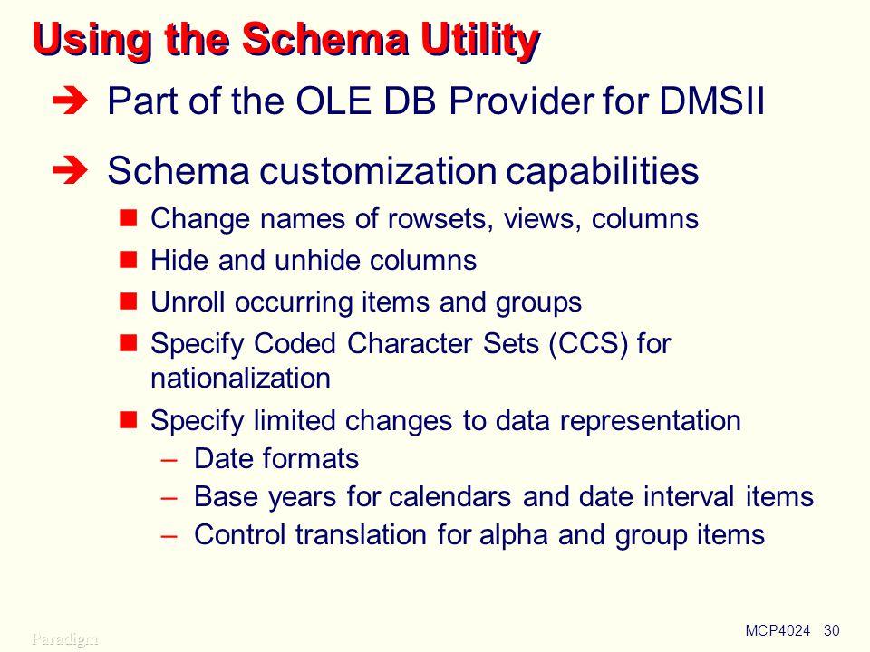 Using the Schema Utility