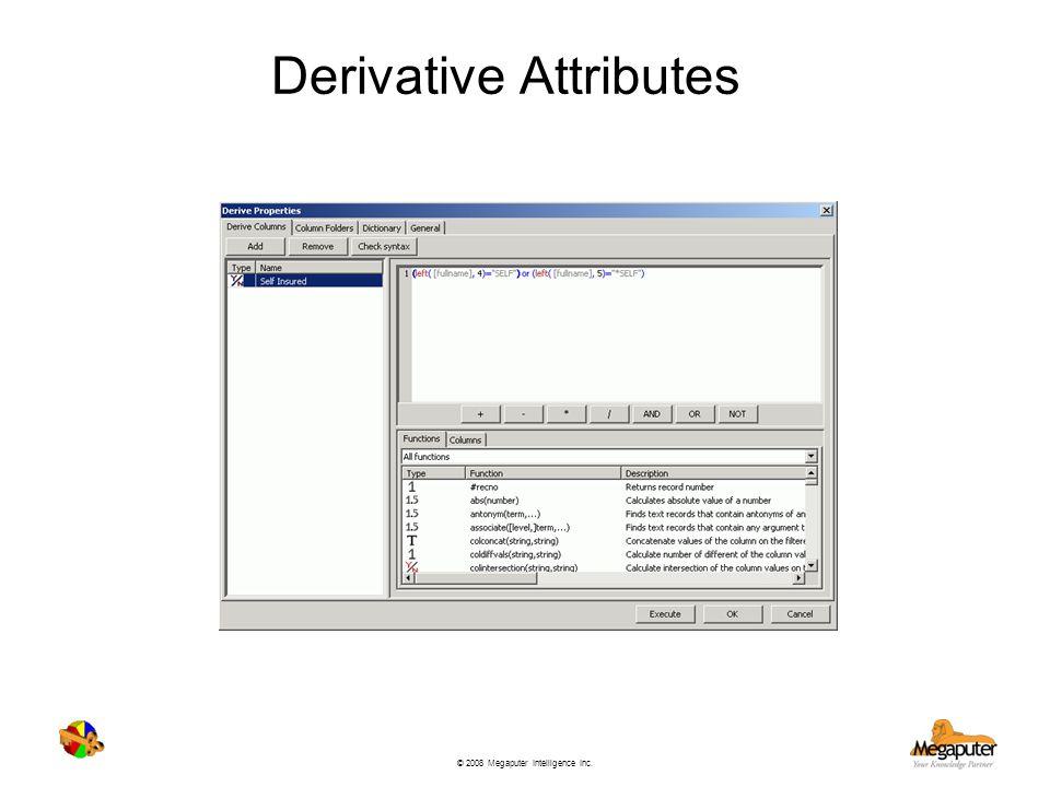 Derivative Attributes