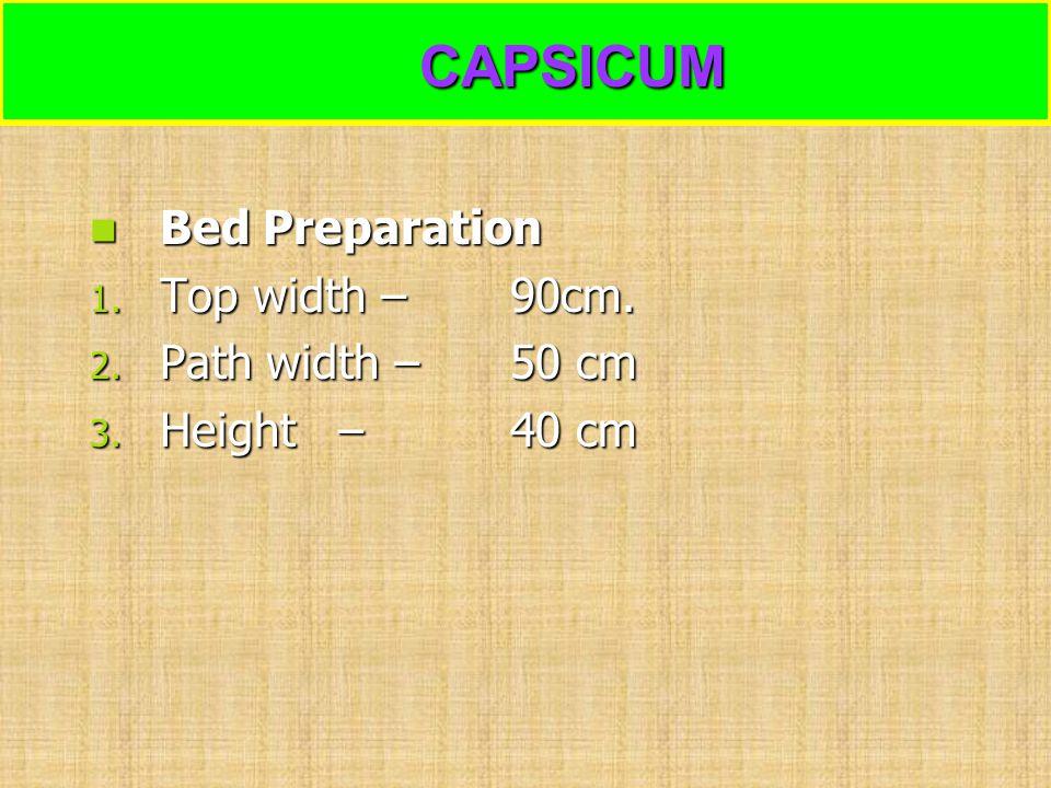 CAPSICUM Bed Preparation Top width – 90cm. Path width – 50 cm