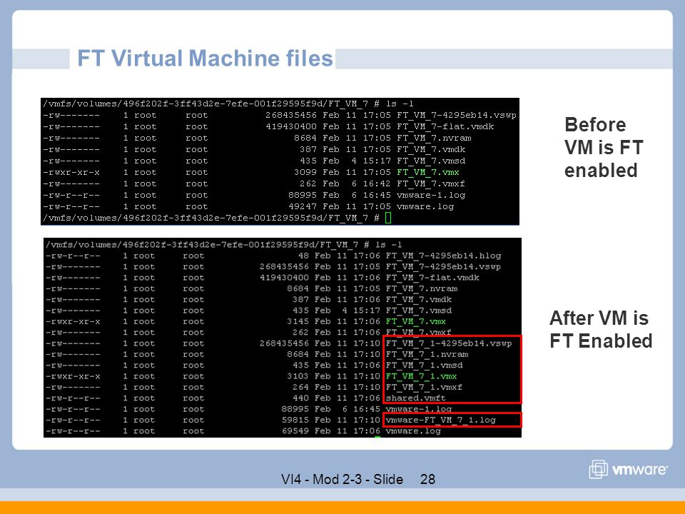 FT Virtual Machine files