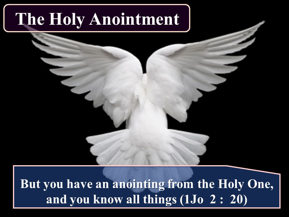The Holy Anointment But you have an anointing from the Holy One, and you know all things (1Jo 2 : 20)