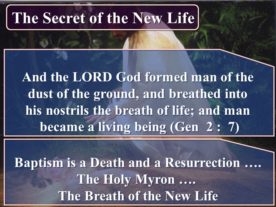 The Secret of the New Life